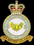RAF No. IX Squadron Badge
