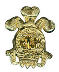 Prince of Wales Own Badge