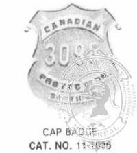 11-1006 Custom Security Company Badges