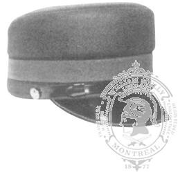 4-1002 Municipal Police Model 810F