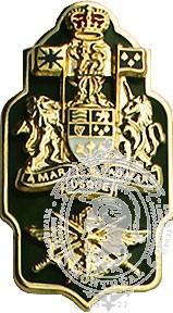 CF Formation Chief Warrant Officer Collar Rank (pair)