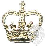 Gold 6-1000 Rank Crown w/ push pins (pair)
