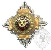 Gold & Silver 6-1029 Rank Pip w/ stems (pair)