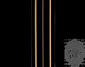 CAFC Braid, 2-1/2 Gold Bars (mtr)
