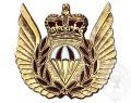 Para Rescue Wing, Metal