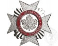 CAFC Cap Badge