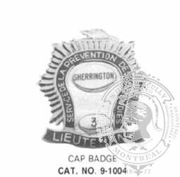 9-1004 Municipal Fire Cap Badge