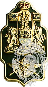 Insignes de collet FC adjudant chef de formation (paire)