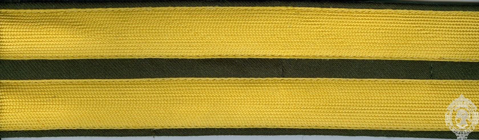 Custom Ceremonial Belt No. 3