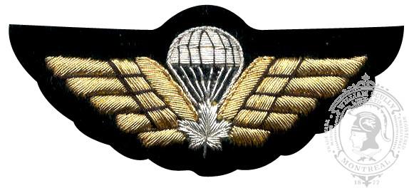 Aile de parachutiste brodé, blanc