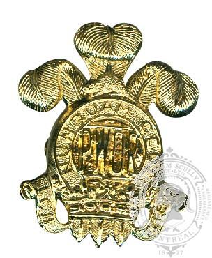 Insigne de képi The Princess of Wales' Own Regiment