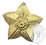 Étoile dorée 5 points 6-1030G avec vis (paire)