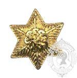 Étoile dorée 6 points 6-1044G avec pattes en metal (paire)
